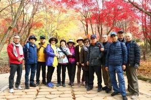 동부모임의 가을여행(11월7일.횡성호수 5구간.청태산.구룡사)